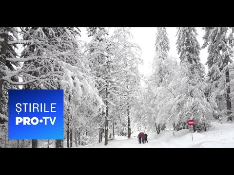 Stirile PRO TV - 13.01.2019 - Un ciclon din Atlantic loveste Romania from YouTube · Duration:  2 minutes 2 seconds