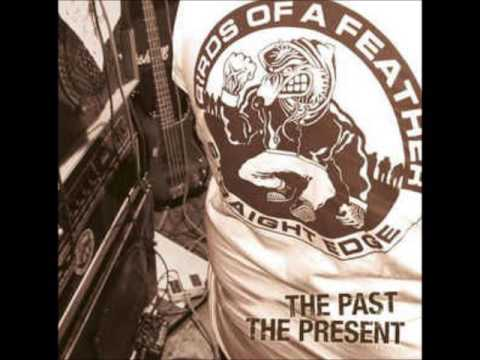 Birds Of A Feather - The Past, The Present (LP) 2008