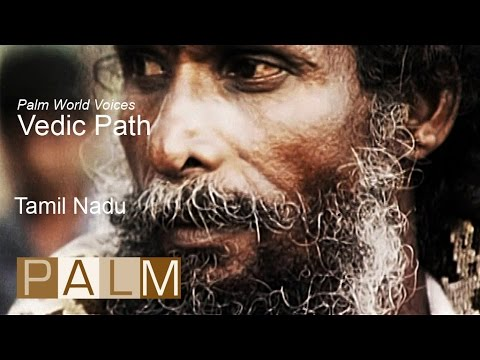 Palm World Voices: Vedic Path | Tamil Nadu [Music by M Path]