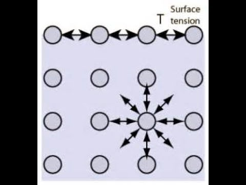 SURFACE TENSION IN HINDI