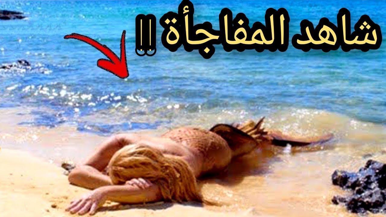 شاهد لحظة ظهور حورية البحر على الشاطئ ولكن ما فعلته كان صادم للغاية... أنظروا ماذا فعلت !!