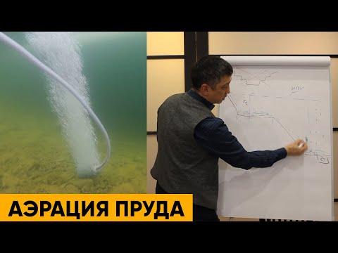 АЭРАЦИЯ ПРУДА | Подводная съемка зимой | Лекция про аэраторы для пруда