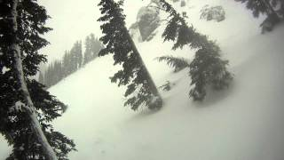 Palisades/Alpine Bowl Powder with Dave Thumbnail