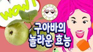 구아바 효능 구아바 열매 먹는법 - 구아바 비염에 좋은…