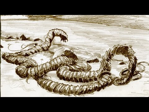 Lake Monster DOES Exist Says Iceland Government Commission