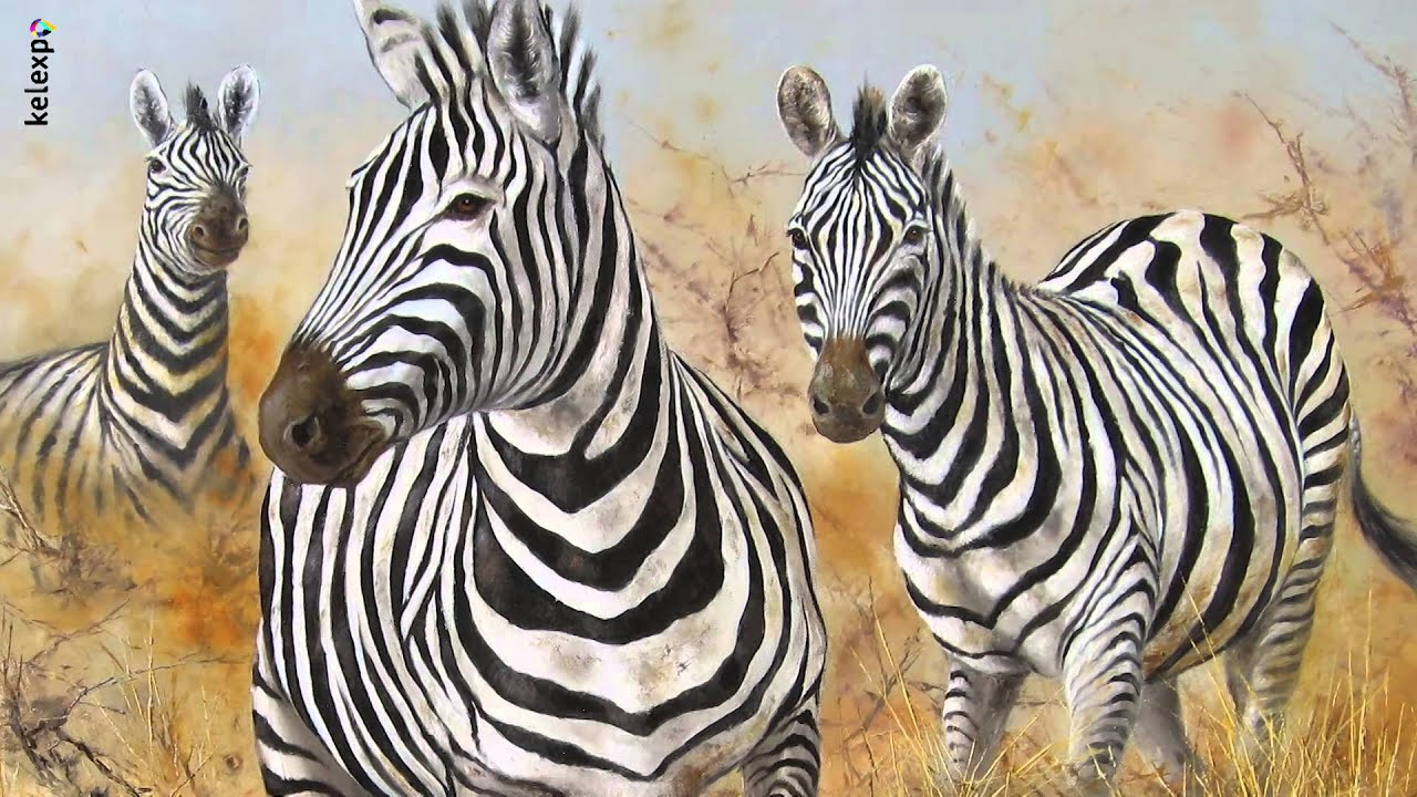 pierre couzy artiste peintre animalier youtube
