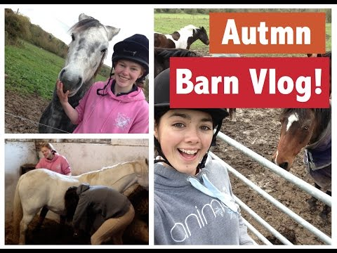Vlog!   First time working at the stables!