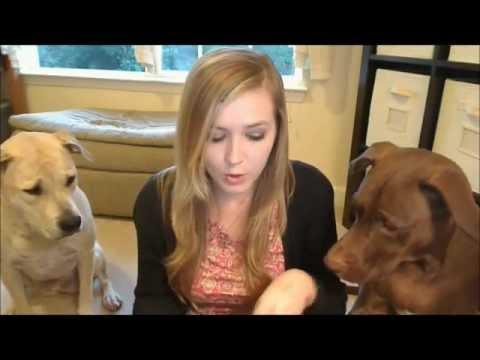 Sample Round-up #1 (Dog Tricks At End!)