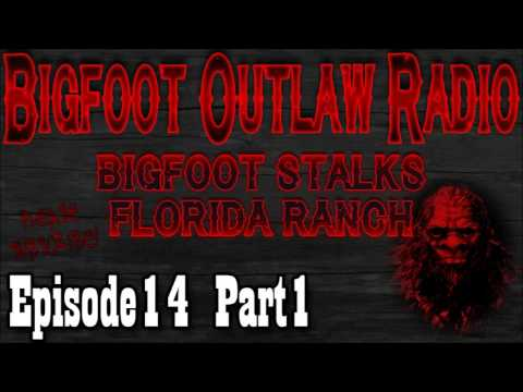 Bigfoot Outlaw Radio Ep14 Bigfoot Stalks Florida Horse Ranch