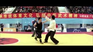 Video Wushu:TaiChi man(Tiger Chen) VS Nanquan fighter download MP3, 3GP, MP4, WEBM, AVI, FLV Juli 2018