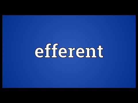 Header of efferent