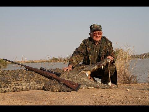 Nile Crocodile Zimbabwe