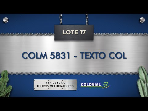 LOTE 17   COLM 5831