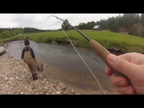 Fly Fishing On The Little Pend Oreille River
