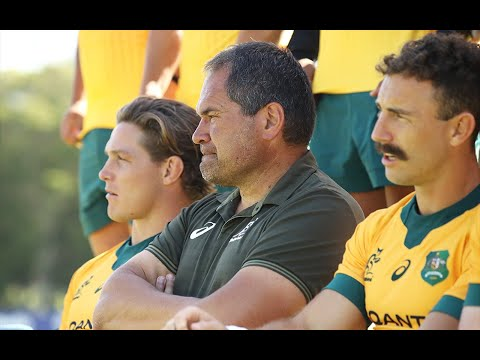 Wallabies favourites against Argentina