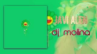 J. Balvin, Sky - Verde ( Dj Molina & Javi Alen Dj REMIX )