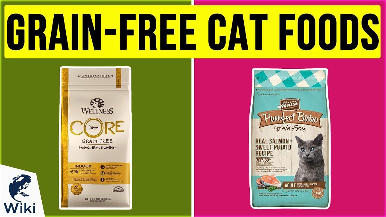 Top 10 Grain Free Cat Foods Of 2020 Video Review