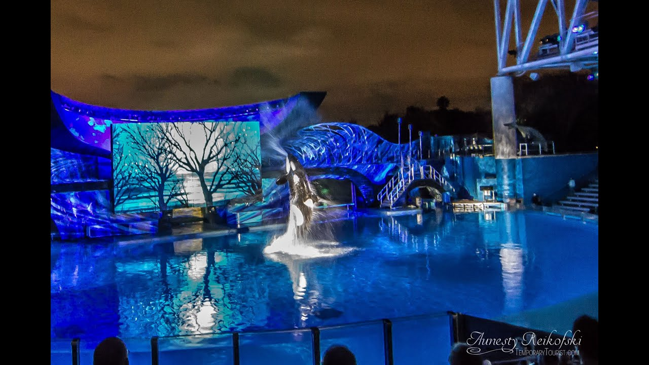 Shamu Christmas Miracles SeaWorld Orlando Christmas FULL Show 2014 ...