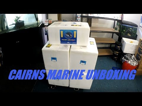 Cairn Marine unboxing- lots of corals, giant Moorish idol, Harlequin tusk and much much more.