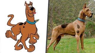 شخصيات سكوبي دو في الحقيقة/Scooby Doo characters in Real Life