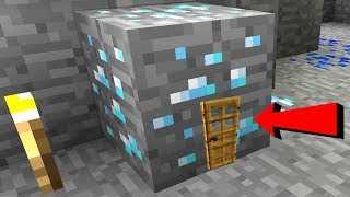 Minecraft: DIAMOND ORE HOUSE!!! (MINING INSIDE DIAMONDS!)