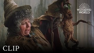 Mandrake Potting | Harry Potter and the Chamber of Secrets