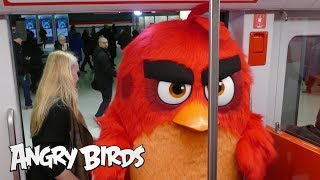 Angry Birds - Red takes the Länsimetro to work