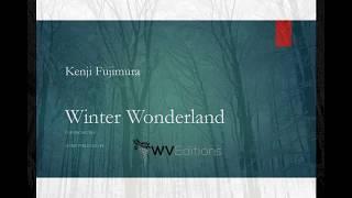 Kenji Fujimura - Winter Wonderland 藤村健史:冬のワンダーランド