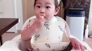 8개월 아기 [닭고기 들깨 밥볼, 채소 달걀말이, 비트…
