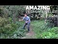 2 Acre Small Scale Permaculture Farm with Amazing Design