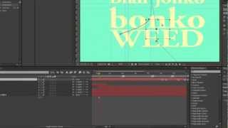 After Effects CS6 & CC Tutorial - was tun wenn die shortcuts nicht funktionieren