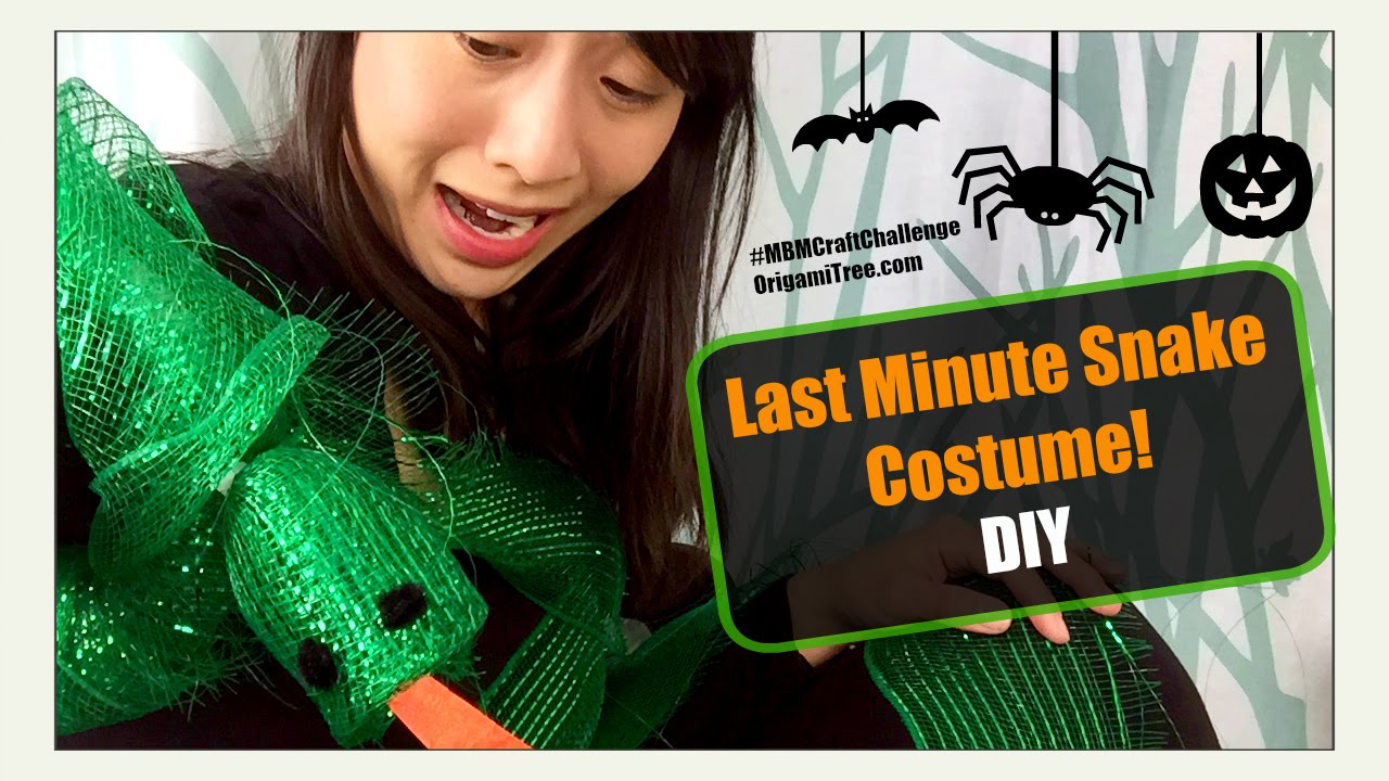Halloween Crafts DIY Last Minute Halloween Costume (Snake) Made By Mommy Craft Challenge - YouTube  sc 1 st  YouTube & Halloween Crafts DIY Last Minute Halloween Costume (Snake) Made By ...