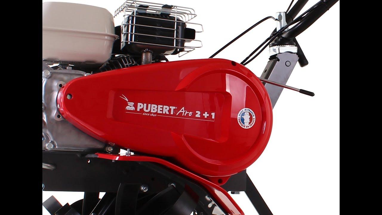 PUBERT ARO 2+1