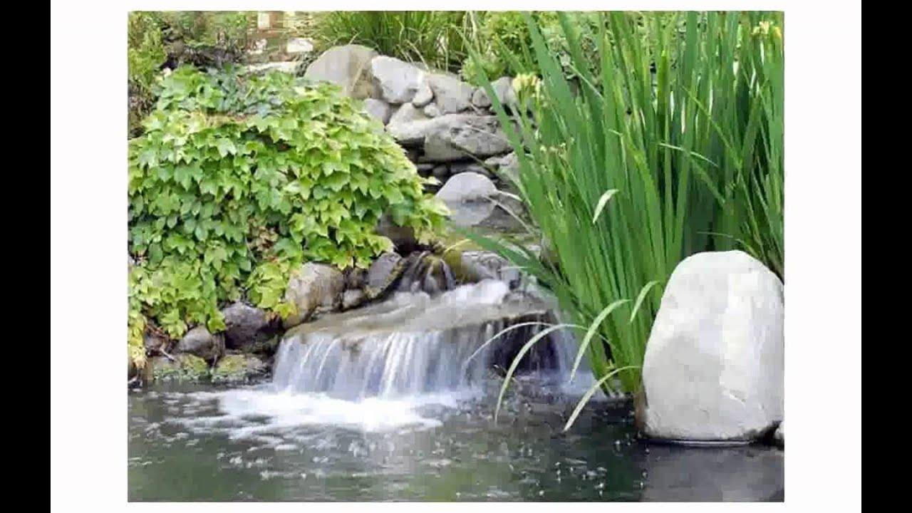 Como arreglar mi jardin con poco dinero dise os - Decorar el jardin con poco dinero ...