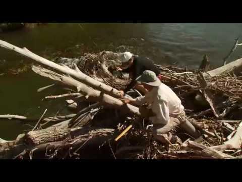 2009 gallatin river lodge fly fishing bozeman montana for Bozeman fishing report