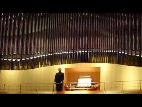 DANIEL BEILSCHMIDT-Johann Sebastian Bach (1685-1750): Passacaglia, BWV 582-00126