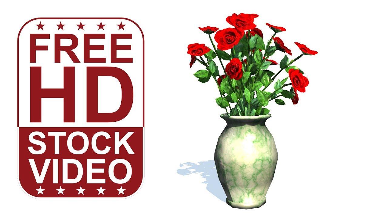 Red Roses In Vase On White