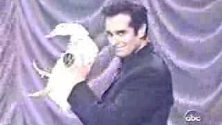 David Copperfield無疑是20世紀最偉大的魔術師他把魔術提升到另一個境界...