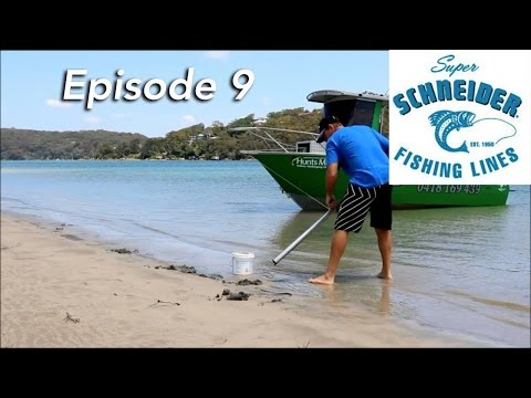 How To Fish The Port Hacking River  | The Hook And The Cook | Episode 9