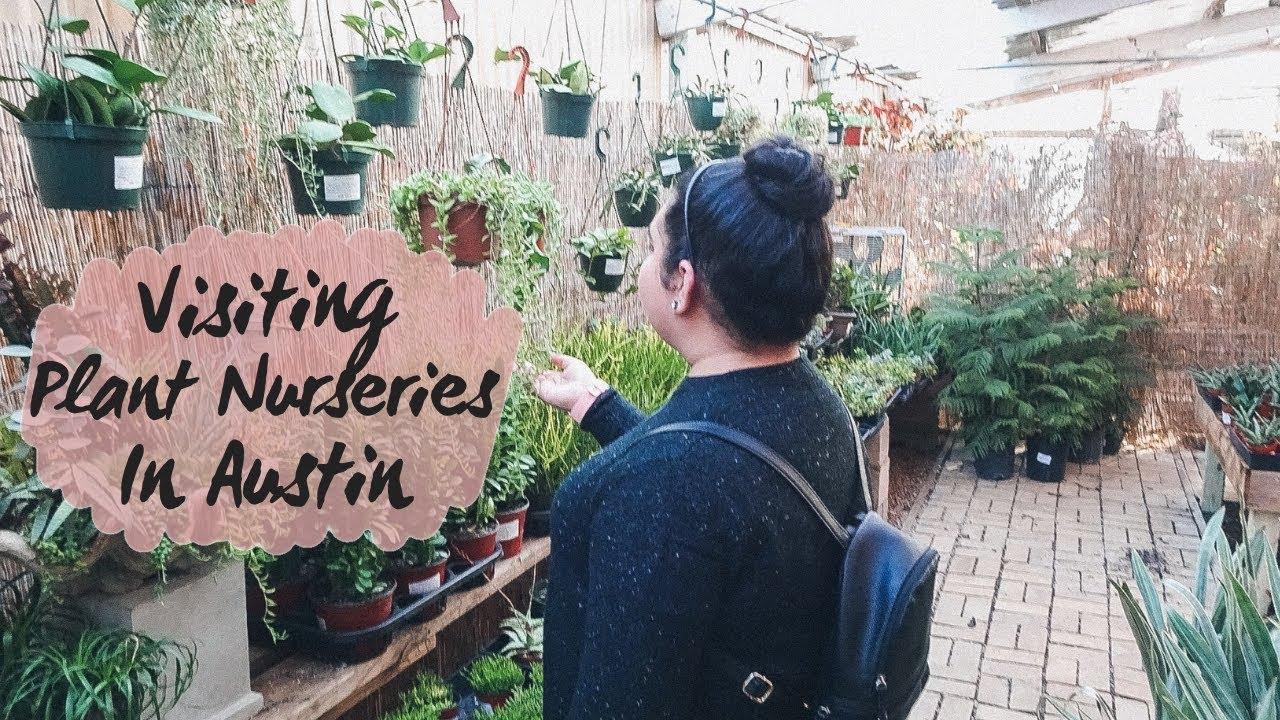 Plant Nurseries In Austin Texas