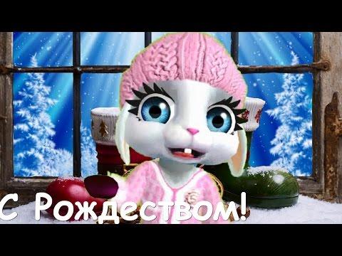 Zoobe Зайка Поздравляю с Рождеством! - Как поздравить с Днем Рождения