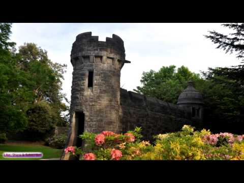 Relaxing Celtic Music | Ashford Castle | Relaxing Irish / Celtic Music