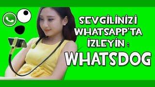 Sevgilinizi Whatsapp'ta İzleyin: WhatsDog