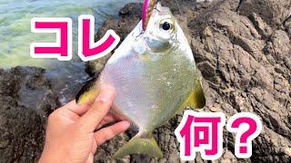 【沖縄ルアー】色んなルアーを投げた結果色んな魚が釣れた【沖縄釣り】