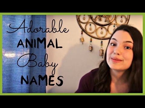 Adorable Animal Baby Names