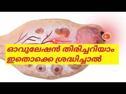 ഓവുലേഷന്റെ ലക്ഷണങ്ങൾ/ ovulation symptoms