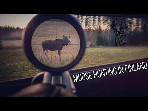 NH: Hirvijahti | Moose Hunting | 2017