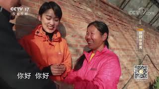 《田间示范秀》 20200123 高手教你种草莓|CCTV农业