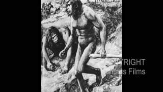PROVEN!  LIES - DECEIT - FRAUD - The Dilemma of Modern Evolution!