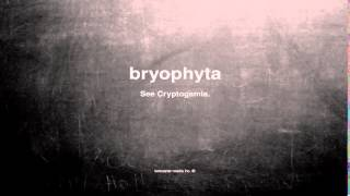 What does bryophyta mean